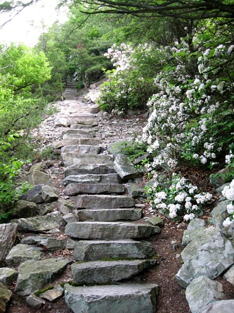 1000 Steps 2012 J. Clark (3)www