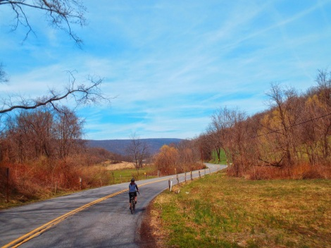 Road biking in Central PA. Photo by Evan Gross.