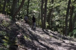 The Terrace Mountain Trail is well-maintained and defined. Photo by Ed Stoddard, Raystown.org